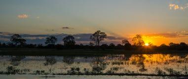 Sunset in Brazilian pantanal Royalty Free Stock Images