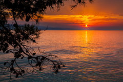 Sunset in Brela Stock Photography