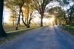 Sunset by at Bridle path in Central park Stock Images