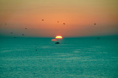 Sunset. Bright yellow sun setting over the sea with lovely orange sky with no clouds birds in the sky and a boat on the water Stock Photography