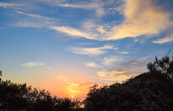 Sunset Through the Brush at Torrey Pines State Reserve in San Diego stock photos