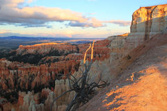 Sunset in Bryce Canyon, Utah, USA Royalty Free Stock Photos