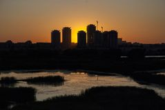 Sunset in Bucharest Delta Lake. Nature versus city, reed and water in the red sun Royalty Free Stock Images