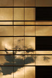Sunset On a Building Window Wall Stock Image
