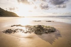 Sunset at the byron bay beach royalty free stock image