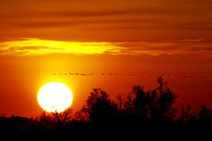 Sunset in Camargue France Stock Photo