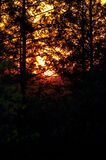 Sunset at camp royalty free stock photography