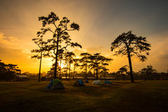 Sunset Camping tents Royalty Free Stock Photos