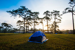 Sunset Camping tents Stock Photography