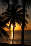 Sunset in the Caribbean Stock Photos