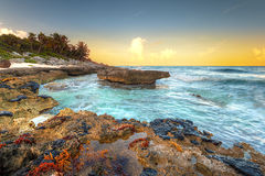 Sunset at Caribbean Sea in Mexico. Amazing sunset at Caribbean Sea in Mexico Royalty Free Stock Images