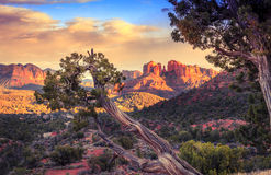 Sunset at Cathedral Rock Stock Photos