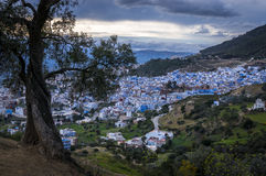 Sunset in Chefchaouen. Morocco. View from an olive garden Stock Images