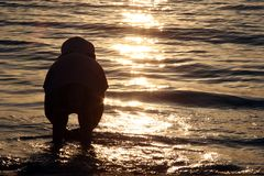 Sunset and a Child. A child in water at sunset royalty free stock photography