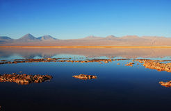 Sunset in chilean lagoon Stock Photography