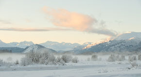 The Sunset Chilkat Valley under a covering of snow Stock Images