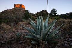 Sunset in Chisos basin Big Bend Texas Royalty Free Stock Photos