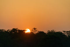 Sunset on Chitwan jungle Stock Images