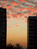 Sunset in the City. Pink sunlight reflects off the clouds that are visible between two tall buildings in this sunset view in the city Stock Photo