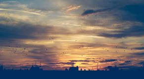 Sunset in the city, buildings and antennas silhouettes with birds flying. Stock Photos