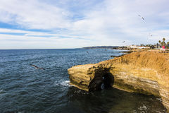 Sunset cliffs with flying seagulls in San Diego, California Royalty Free Stock Photo