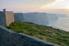 Sunset at Cliffs of Moher Royalty Free Stock Photos