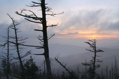 Sunset, Clingman's Dome Royalty Free Stock Images
