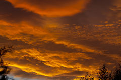 Sunset clouds Stock Photography