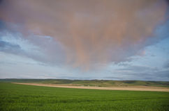 Sunset Clouds Over Wheat Fields Royalty Free Stock Images