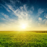 Sunset in cloudy sky over green grass field. Golden sunset in cloudy sky over green grass field Stock Photography