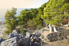 Sunset on the Coast in Istria. Croatia. Europe stock photos