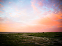 Sunset at coast of the sea Stock Photography