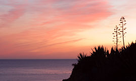 Sunset at coast of the sea,south Portugal.Algarve Royalty Free Stock Photos