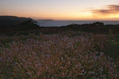 Sunset on the coast Stock Image