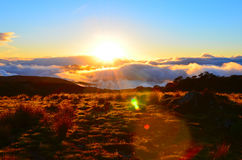 Sunset, Cobb Valley. Kahurangi National Park, New Zealand royalty free stock images