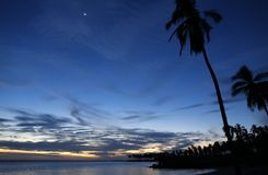 Sunset Cocnut Trees and the Moon. A Beach Scene Stock Images