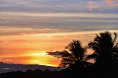 Sunset coconut tree. Sky beautiful Orange Silhouettes Stock Photo