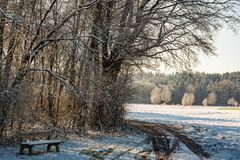 Sunset in a cold white winter day landscape. Road through rural area frosted fields. Bench in forest royalty free stock photography