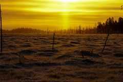 Sunset during cold winter day Lapland, Finland royalty free stock images