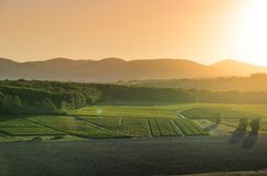 Sunset colors over vineyards and landscape of Beaujolais land. Sunset colors over landscape of Beaujolais land in France Stock Photos