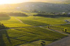 Sunset colors over vineyards and landscape of Beaujolais land Royalty Free Stock Photo