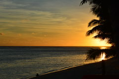 Sunset at Cook Islands. Sunset Cook Islands water silhouette colour ocean palm Stock Photos