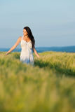 Sunset corn field beautiful brunette woman walk Royalty Free Stock Images