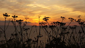 Sunset in Cornwall Royalty Free Stock Photos