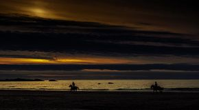 Sunset in Cornwall with horses / St Ives. / Cornwall / United Kingdom Stock Photo