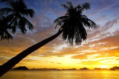 Sunset at Corong corong beach. El Nido Royalty Free Stock Image