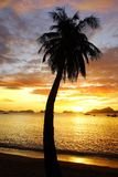 Sunset at Corong corong beach. El Nido Royalty Free Stock Photography