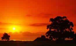 Sunset on corsica coast Stock Photography