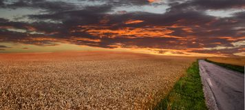 Sunset at the countryside Royalty Free Stock Photo