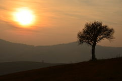 Sunset At The Countryside Stock Image